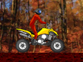 Quad Extreme Race