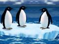 Turbo Penguins