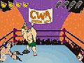 Wrestling Riot